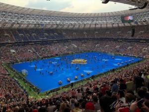 Вот и закончился Чемпионат Мира по футболу.Поздравляю французов!